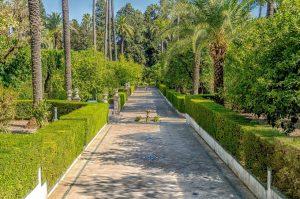 Sevilla con niños: 9 planes y actividades