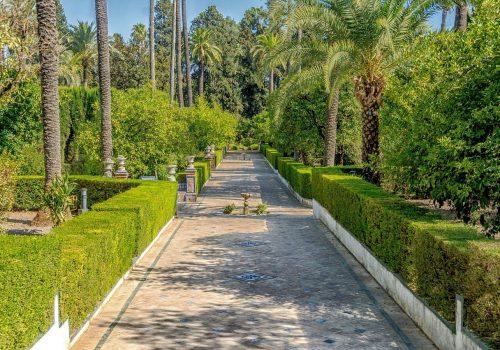 9 planes que hacer en Sevilla con niños (Actualizado 2020)
