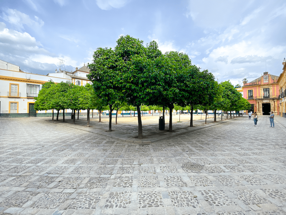 lugar que visitar en Sevilla